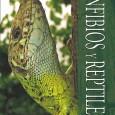 En las librerías irrumpe con pisada fuerte una nueva guía de identificación de anfibios y reptiles, que entre otras cosas, estoy convencido que viene a ser prácticamente «la definitiva», salvo […]