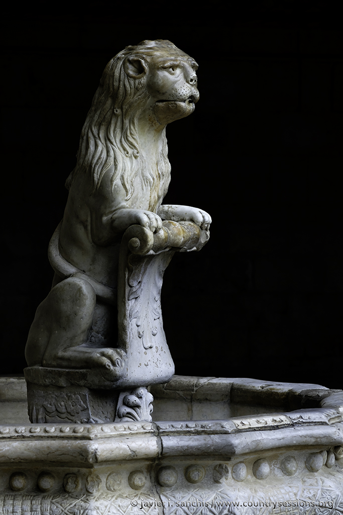 Fuente del león.