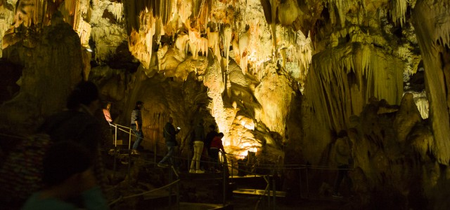 Las Cuevas del Aguila se encuentran en Ramacastañas, a unos nueve kilómetros de Arenas de San Pedro, en la provincia de Avila. Fueron descubiertas el 24 de diciembre de 1963 […]