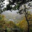 Seguimos en la en los alrededores de la Cuenca del Narcea en la ruta de la Garganta del Cabreiro, que nos dará la oportunidad conocer la vida rural del Principado. […]