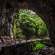 Comenzamos la semana visitando uno de los parajes más curiosos de Asturias, La Cuevona. Curioso porque la carretera que atraviesa esta cueva es el único camino para llegar al municipio […]